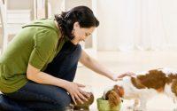 Hốt bạc với ý tưởng kinh doanh đồ dùng cho vật nuôi 12