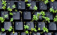 Kinh doanh online cần những gì? 13